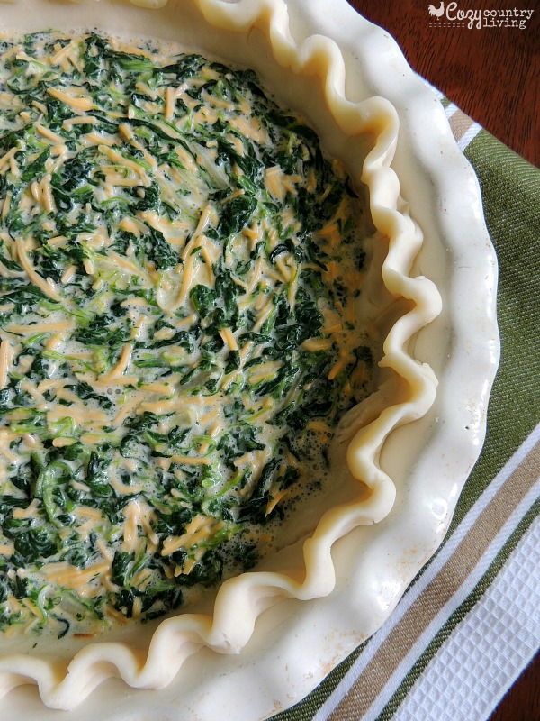 Easy Cheddar Spinach Quiche Cozy Country Living
